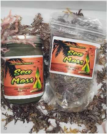 Jamaican Sea Moss
